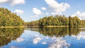 ochrana-zivotneho-prostredia-3172374